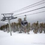 Heavenly Scenic Gondola Ride & Heavenly Donuts