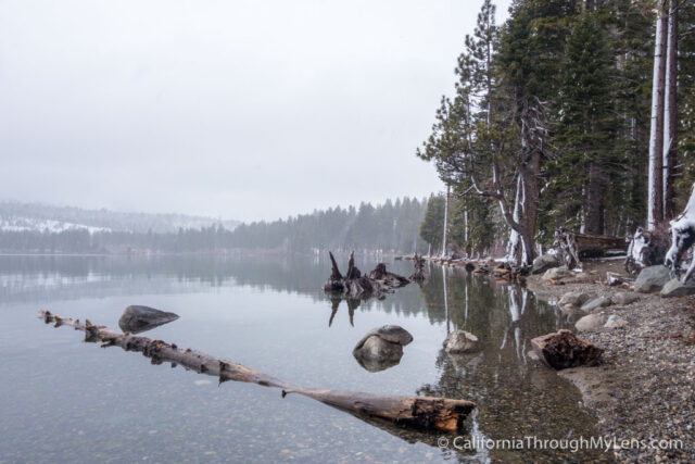 Snowshoe Fallen Leaf Lake-10