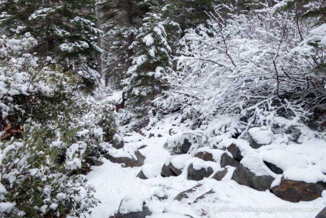 Snowshoe Fallen Leaf Lake-13