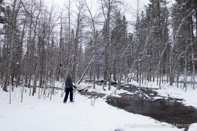 Snowshoe Fallen Leaf Lake-3