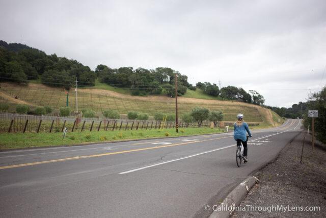Biking Napa Valley-2-2