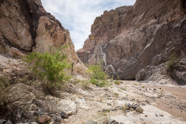 Ladder Canyon-20