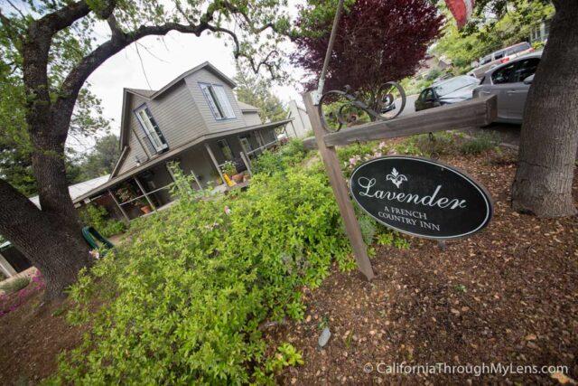 Lavender Inn-1-2