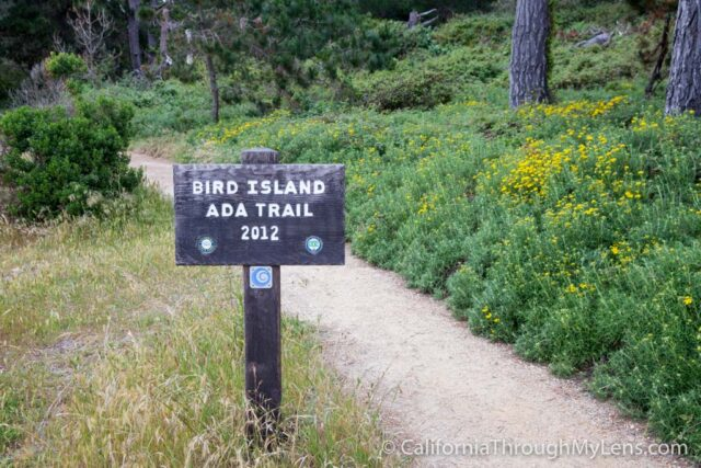 Bird Rock Trail-1