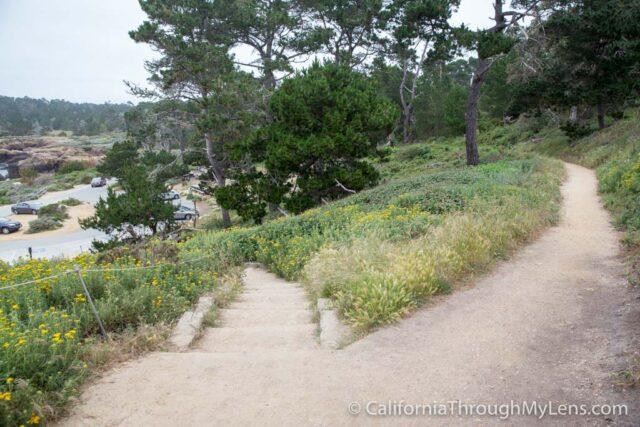 Bird Rock Trail-2
