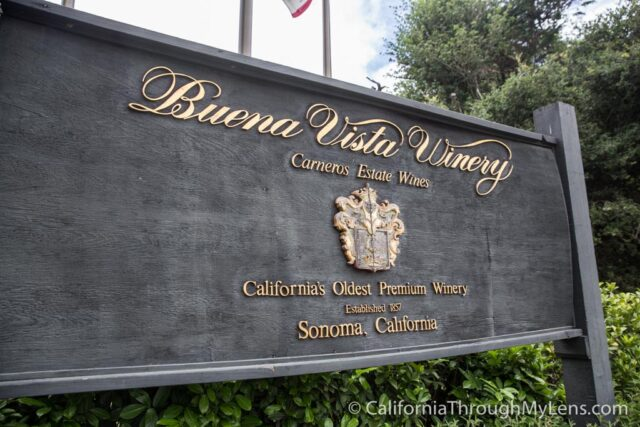 Buena Vista Winery-1