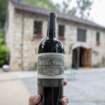 Buena Vista Winery: California's Oldest Winery