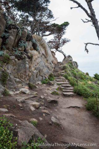 Cypress Grove Trail-11