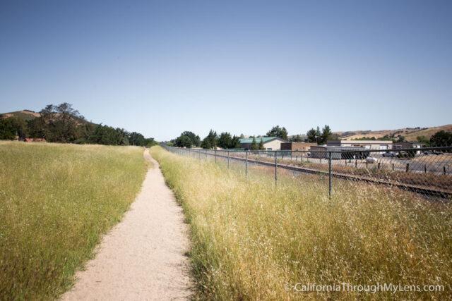 Jim Green Trail-12