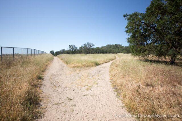 Jim Green Trail-3