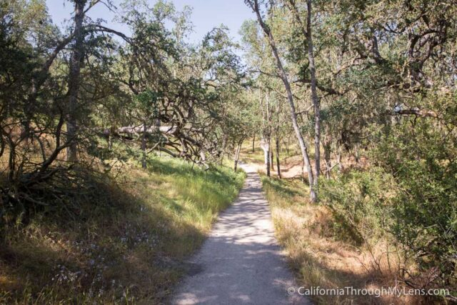 Jim Green Trail-5