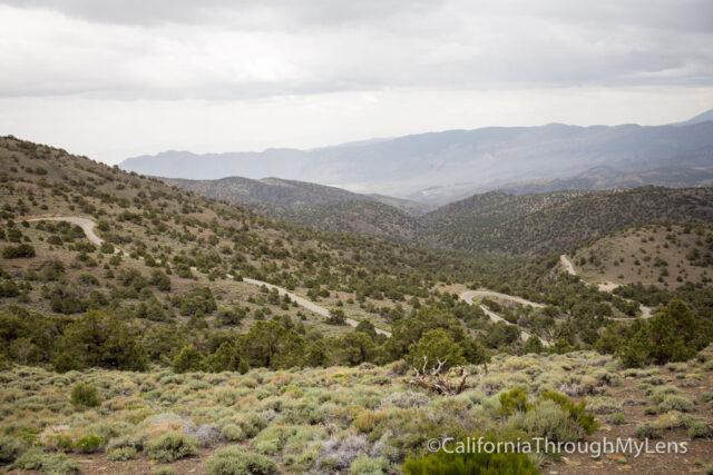 Bristlecone discovery trail-1
