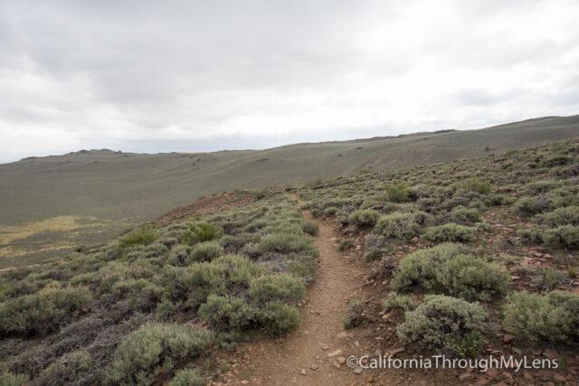 Bristlecone discovery trail-17