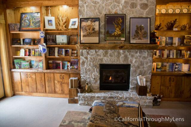 Bristlecone discovery trail-3