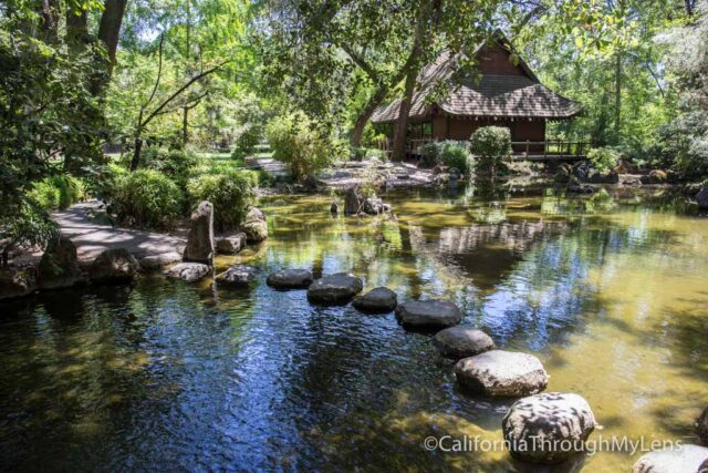 japanese garden-1