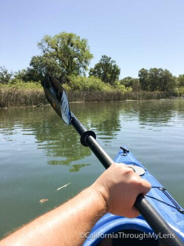 kayaking lodi-2