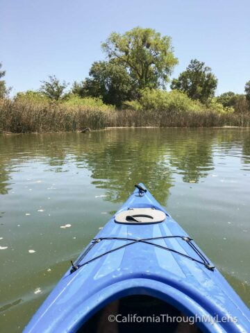 kayaking lodi-3