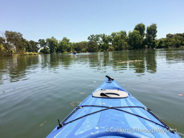 kayaking lodi-4
