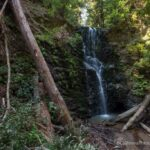 Big Basin State Park: Hiking Berry Creek Falls, Silver Falls & Golden Cascade Falls