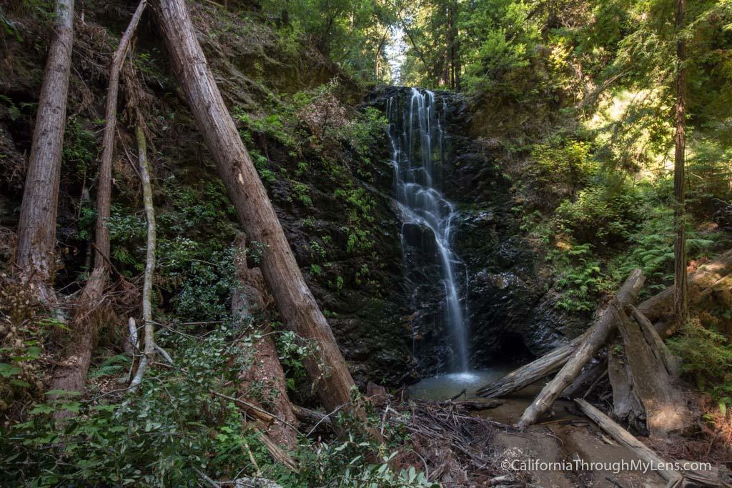 Big Basin State Park Hiking Berry Creek Falls Silver