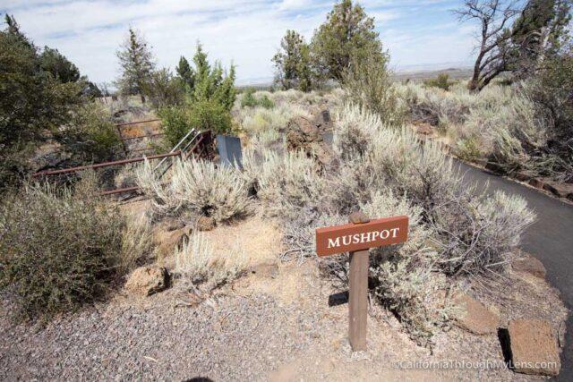 mushpot cave-3
