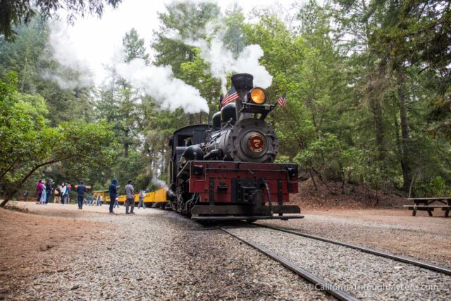 roaring camp train ride-15