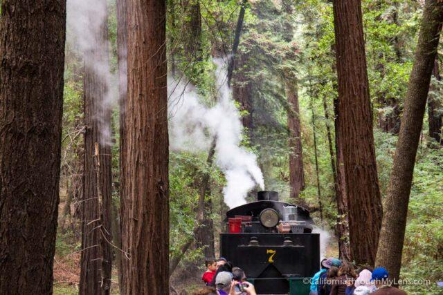 roaring camp train ride-7