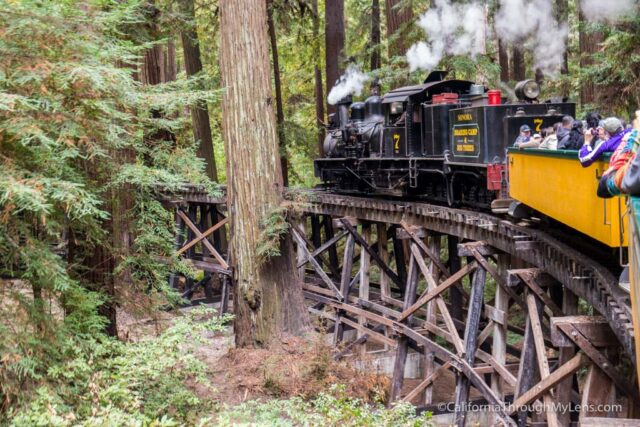 roaring camp train ride-8