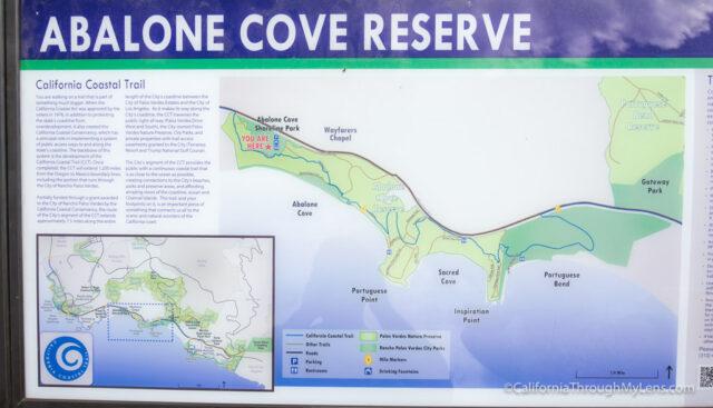 abalone-cove-1