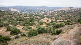 Fort Ord National Monument: Hiking from the Creekside Terrace Trailhead