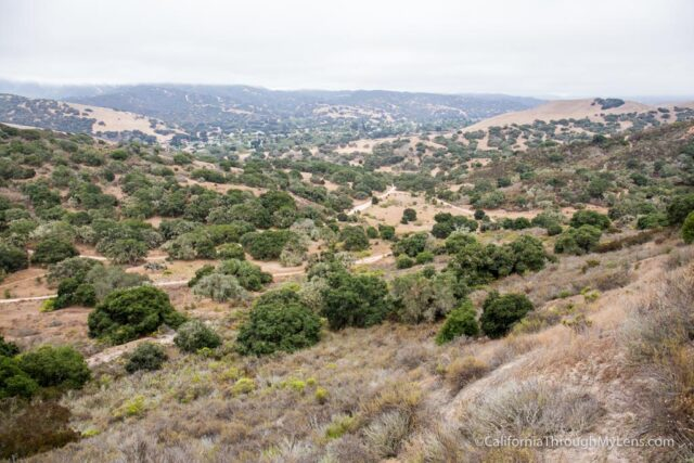 fort ord national monument hiking-14