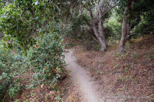 fort ord national monument hiking-4