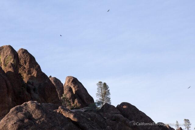 high peaks trail-16