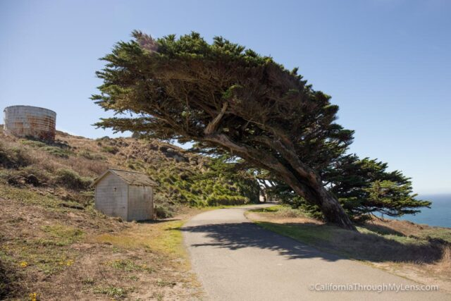 point-reyes-lighthouse-3
