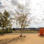 Cornerstone Sonoma: Gardens, Shopping and Photography in Sonoma