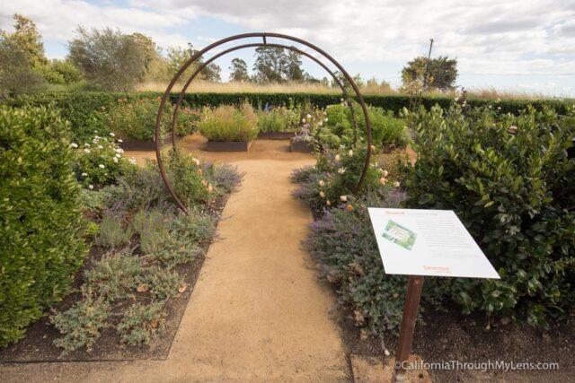 cornerstone-garden-4