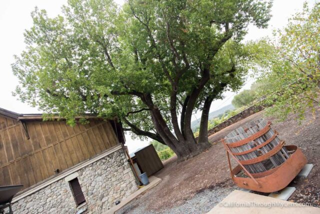 madrone-winery-5