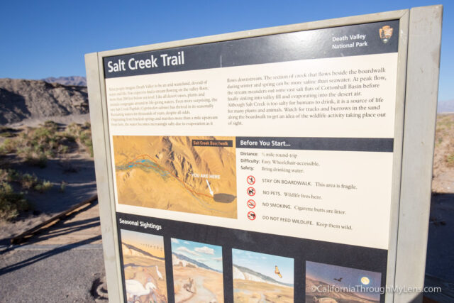 salt-creek-trail-1