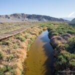 Salt Creek Trail: Seeing Pupfish in Death Valley