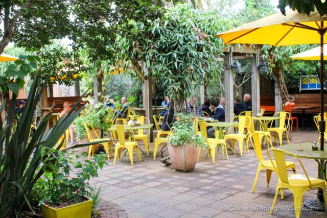 sunflower-cafe-7