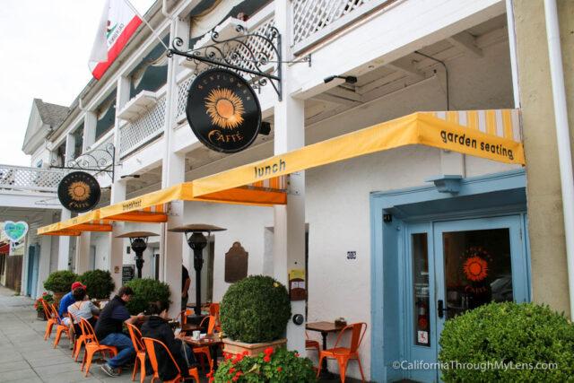 sunflower-cafe-8