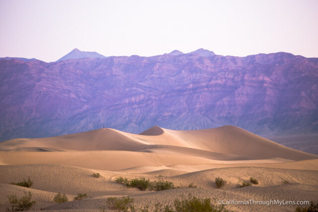 sunrise-at-mesquite-dunes-2