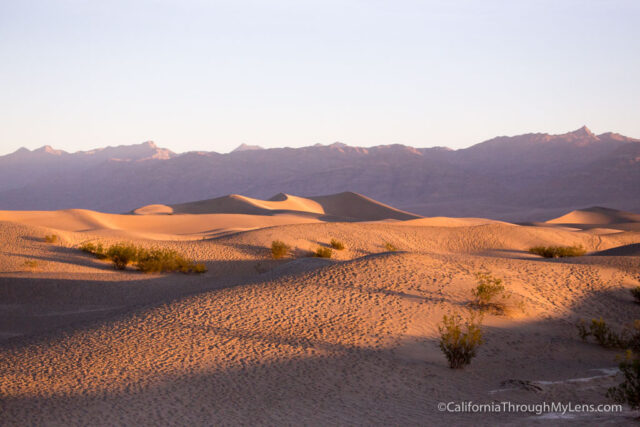 sunrise-at-mesquite-dunes-8