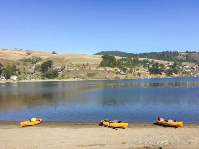 kayaking-russian-river-9