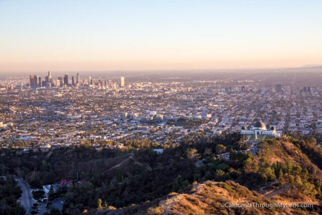 mt-hollywood-21