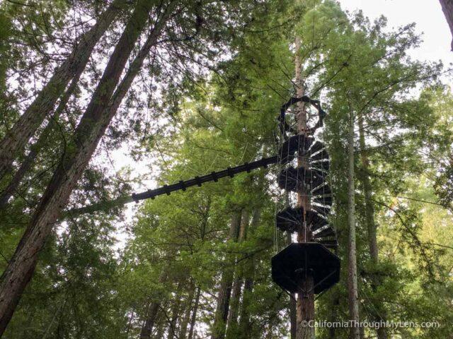 zipline-santa-rosa-1 & Ziplining in the Redwoods with Sonoma Canopy Tours - California ...
