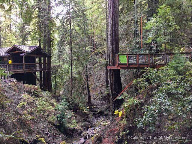 zipline-santa-rosa-2 & Ziplining in the Redwoods with Sonoma Canopy Tours - California ...