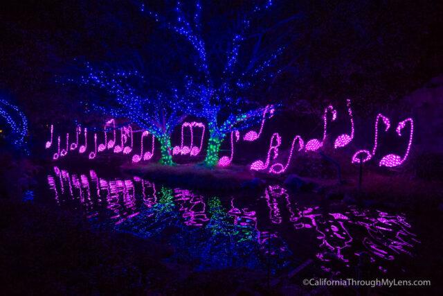 la-zoo-lights-11