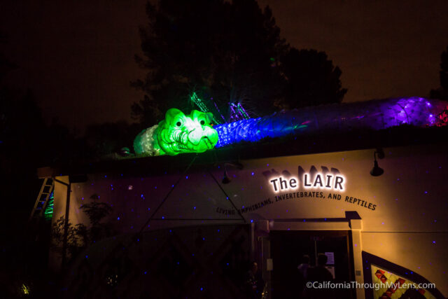 la-zoo-lights-13