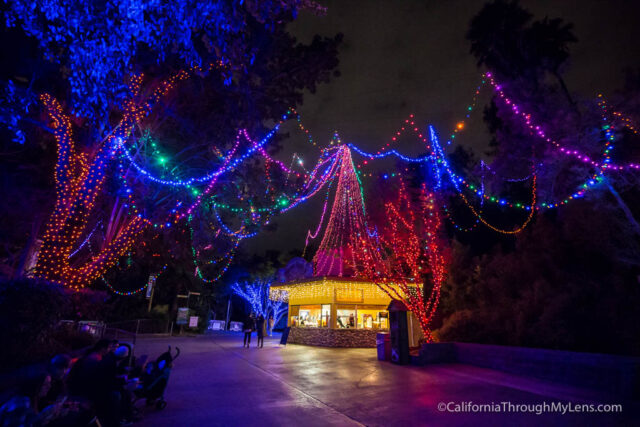 la-zoo-lights-16
